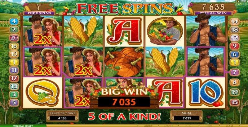 โบนัสคาสิโนสมัครสมาชิก 110% ที่ Royal Ace Casino