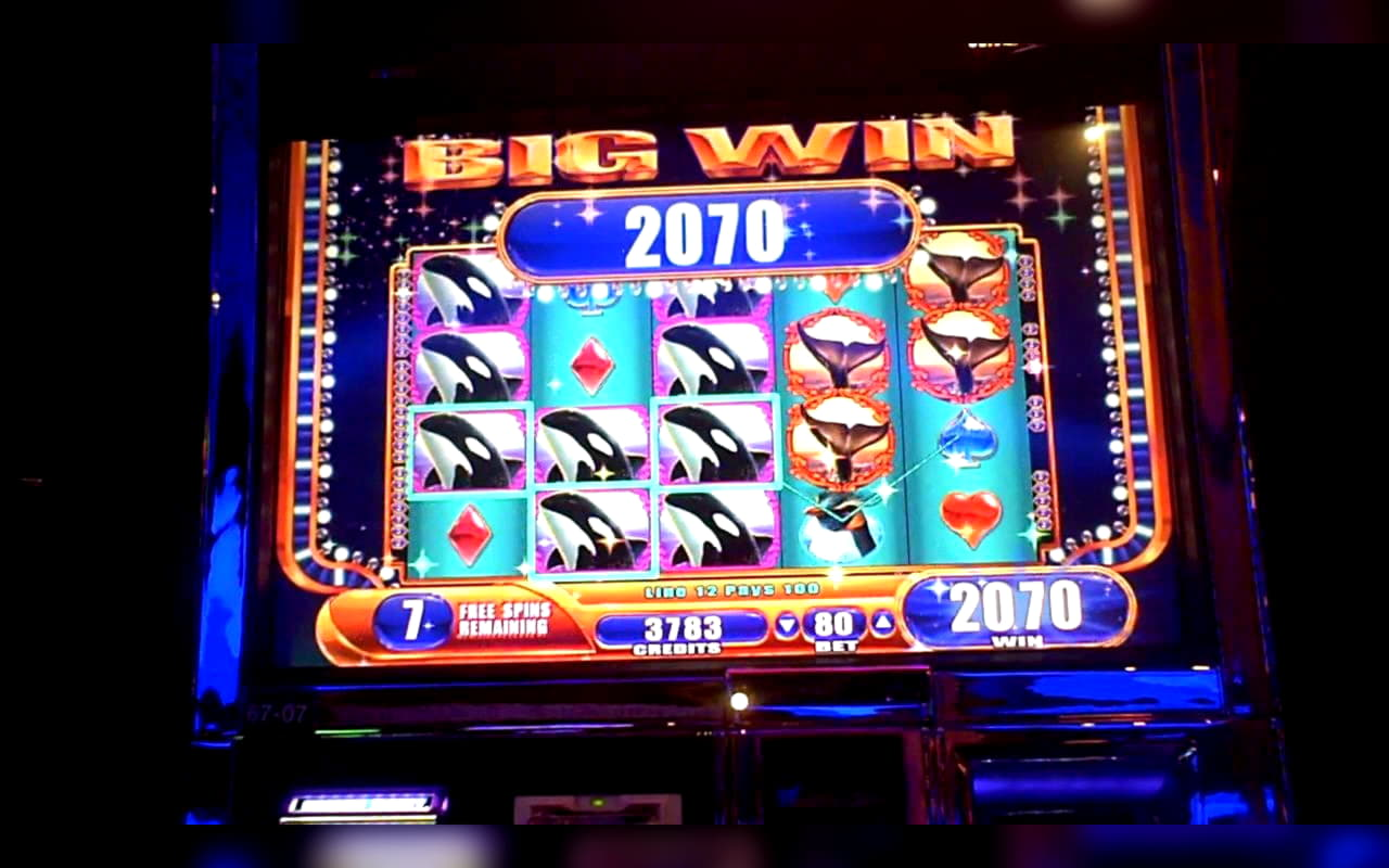 การแข่งขัน EUR 195 คาสิโนออนไลน์ที่ Golden Lion Casino