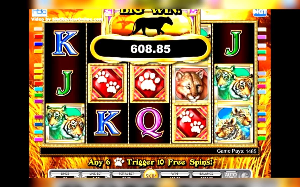 ชิปคาสิโน EURO 85 ที่ Ignition Casino