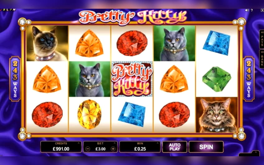 35 Trial Spins ที่ Red Stag Casino