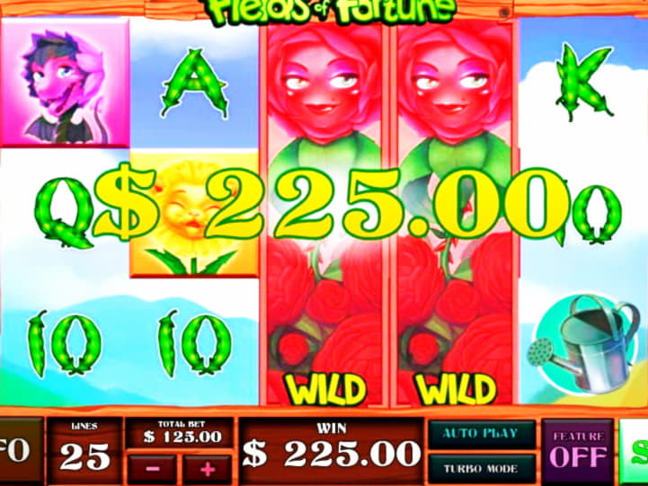 720% โบนัสคาสิโนสมัครที่ดีที่สุดที่ CoolCat Casino