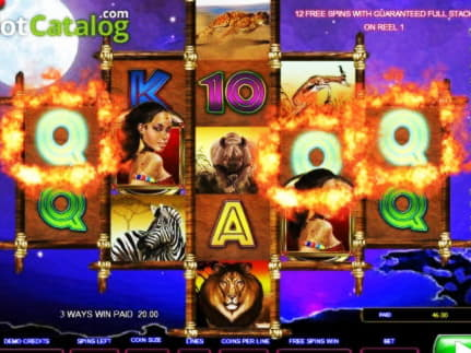 95 ฟรีสปินคาสิโนที่ Red Stag Casino