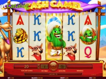 โบนัสจับคู่คาสิโน 795% ที่ Miami Club Casino