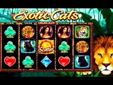 Eur 400 รับเงินสดฟรีที่ Golden Lion Casino