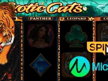 20 free spins at Slots Of Vegas Casino