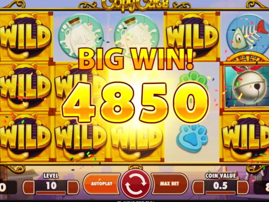 77 สปินฟรีโลยัลตี้! ที่ Cherry Jackpot Casino
