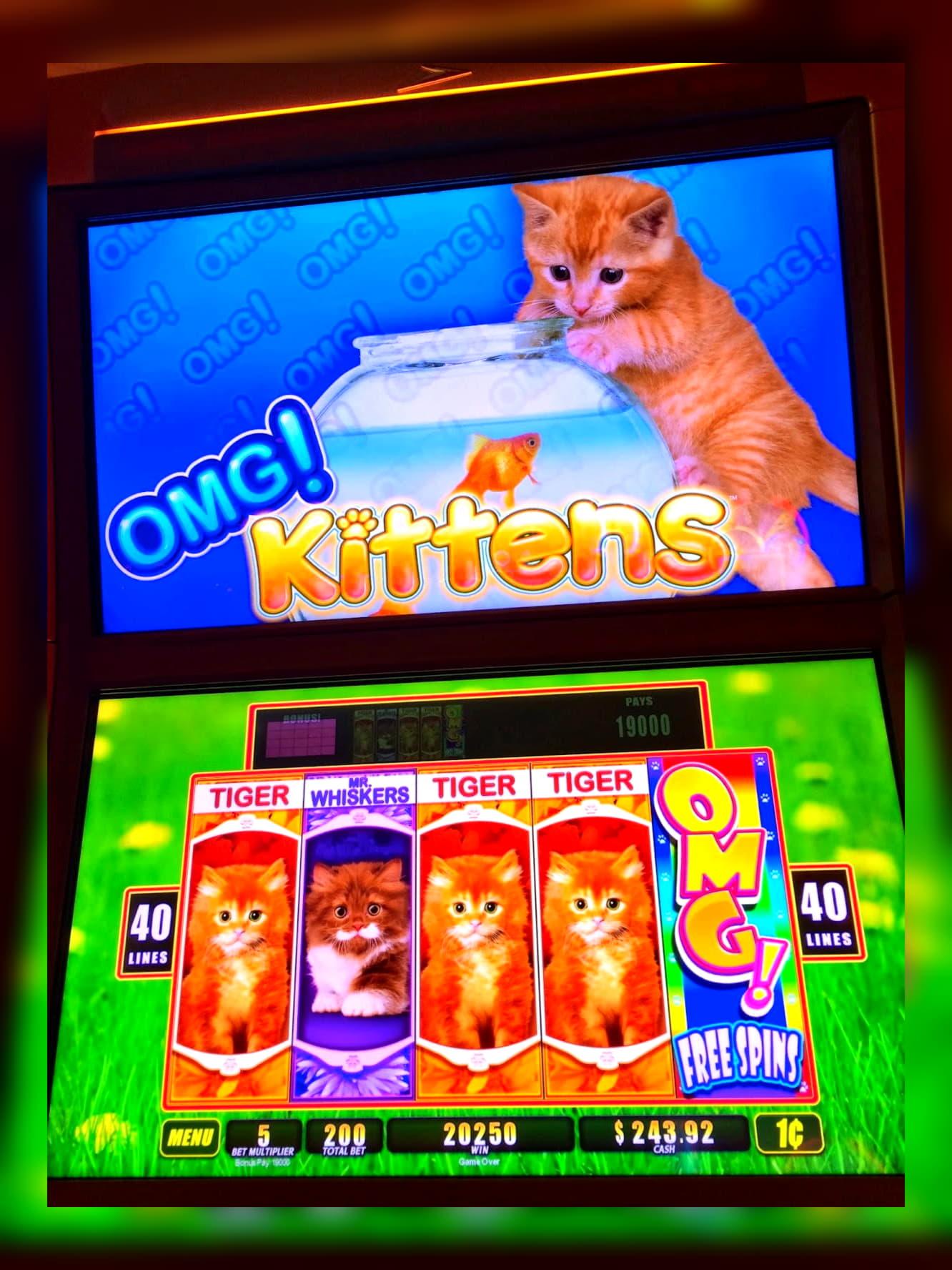 คาสิโนฟรี 155 หมุนที่ Casino Max