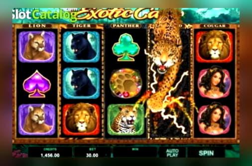 £ 810 การแข่งขันคาสิโนที่ Slots Of Vegas Casino
