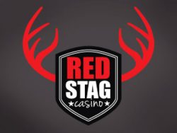 110% Match bonus casino at Red Stag Casino